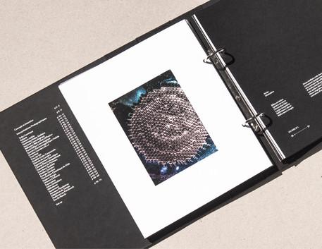 Hubblei reproductions16.jpg