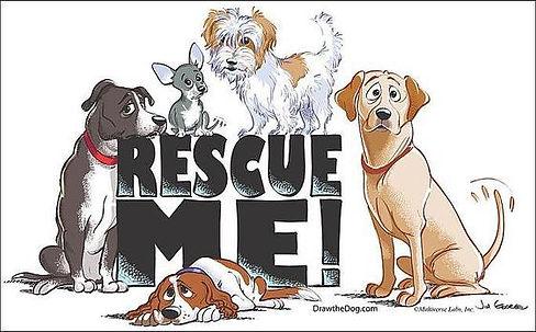 rescueme.jfif