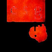 optimiert_ESG-FREIBURG_Logo.png