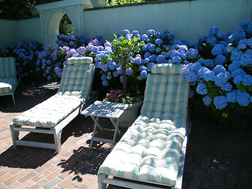 pool cushions with Perennials outdoor fa