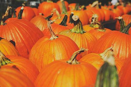 pumpkins of deep orange color