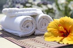 towel-2608073