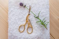 scissors-5700800