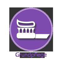 02_Grundpflege-2.png