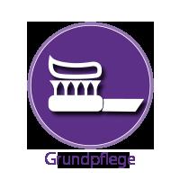 02_Grundpflege.png