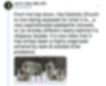Screen Shot 2018-11-09 at 9.20.25 PM.png