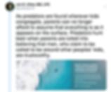 Screen Shot 2019-07-03 at 1.29.25 PM.png