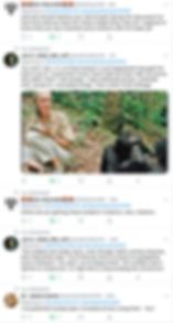 Screen Shot 2019-09-23 at 11.23.21 PM.pn