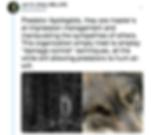 Screen Shot 2018-11-07 at 11.05.23 PM.pn