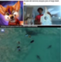 Screen Shot 2020-04-30 at 8.51.26 PM.png