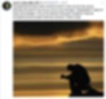 Screen Shot 2018-08-04 at 7.38.45 PM.png