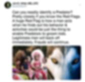 Screen Shot 2019-07-09 at 8.27.17 PM.png