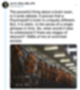 Screen Shot 2019-06-13 at 10.47.11 PM.pn