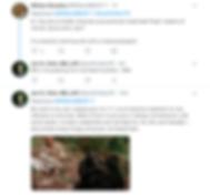 Screen Shot 2019-02-08 at 7.05.06 PM.png