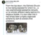 Screen Shot 2018-11-08 at 4.36.32 PM.png