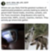 Screen Shot 2019-12-06 at 11.51.30 PM.pn