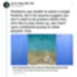 Screen Shot 2019-07-03 at 1.28.20 PM.png