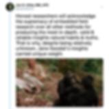 Screen Shot 2019-06-23 at 7.46.41 PM.png