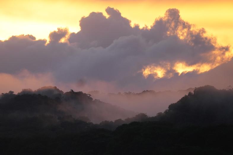Coucher de soleil amazonien