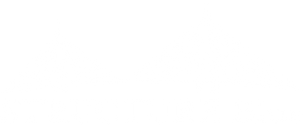 STRUCTURE Blue Logo - White.png
