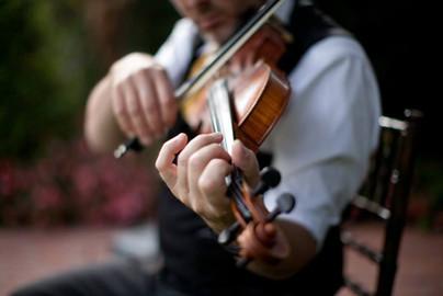 violincloseup.jpg
