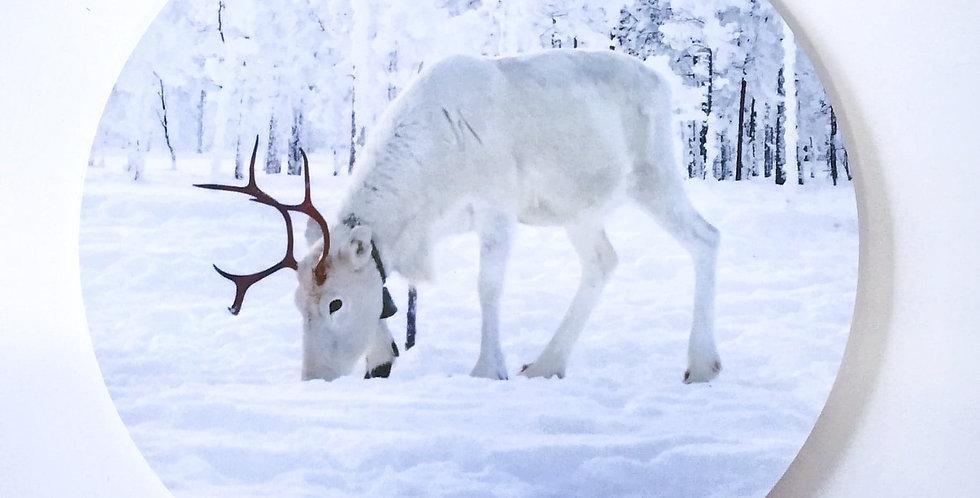 Reindeer pot plate