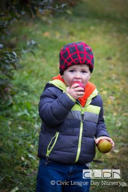 CLDN Apple Orchard-221.jpg