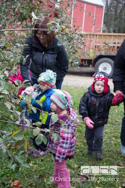 CLDN Apple Orchard-210.jpg