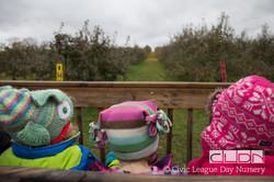 CLDN Apple Orchard-196.jpg