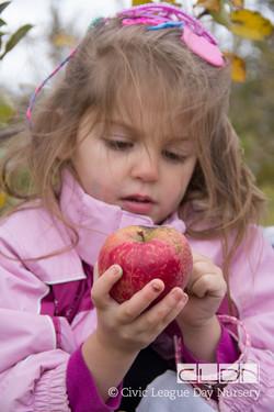CLDN Apple Orchard-268.jpg