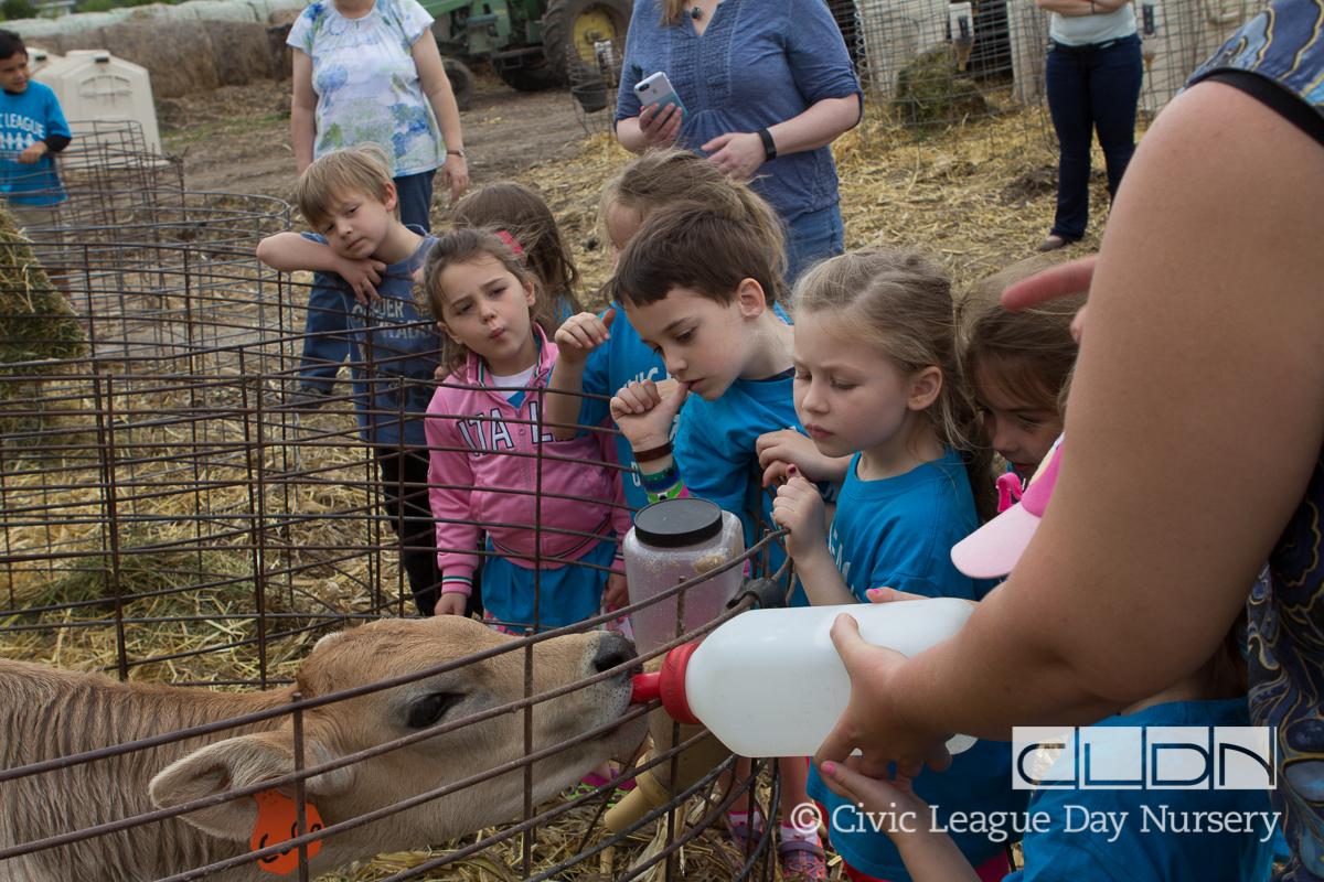 CLDN Farm_2016-391