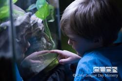 CLDN RAD Zoo-170308-9727