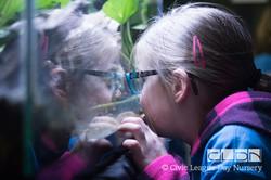 CLDN RAD Zoo-170308-9730
