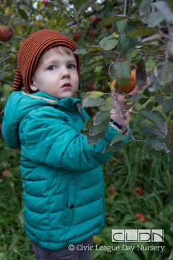 CLDN Apple Orchard-234.jpg