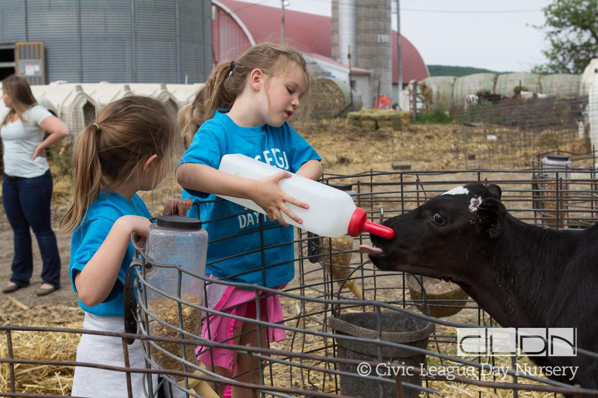 CLDN Farm_2016-449