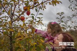 CLDN Apple Orchard-253.jpg