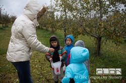 CLDN Apple Orchard-239.jpg