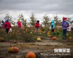 CLDN Apple Orchard-77.jpg