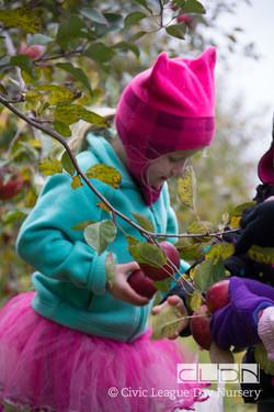CLDN Apple Orchard-312.jpg