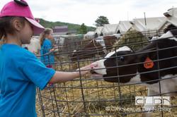 CLDN Farm_2016-369