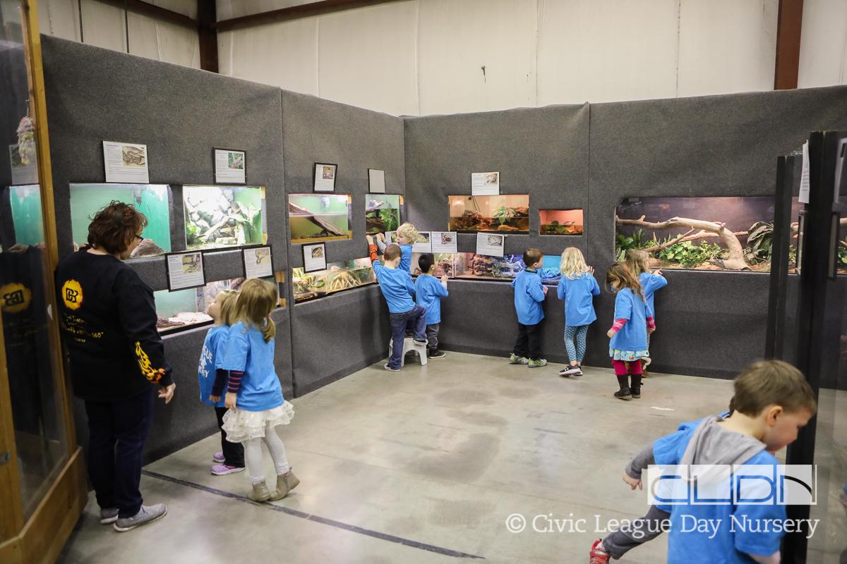 CLDN RAD Zoo-170308-4543