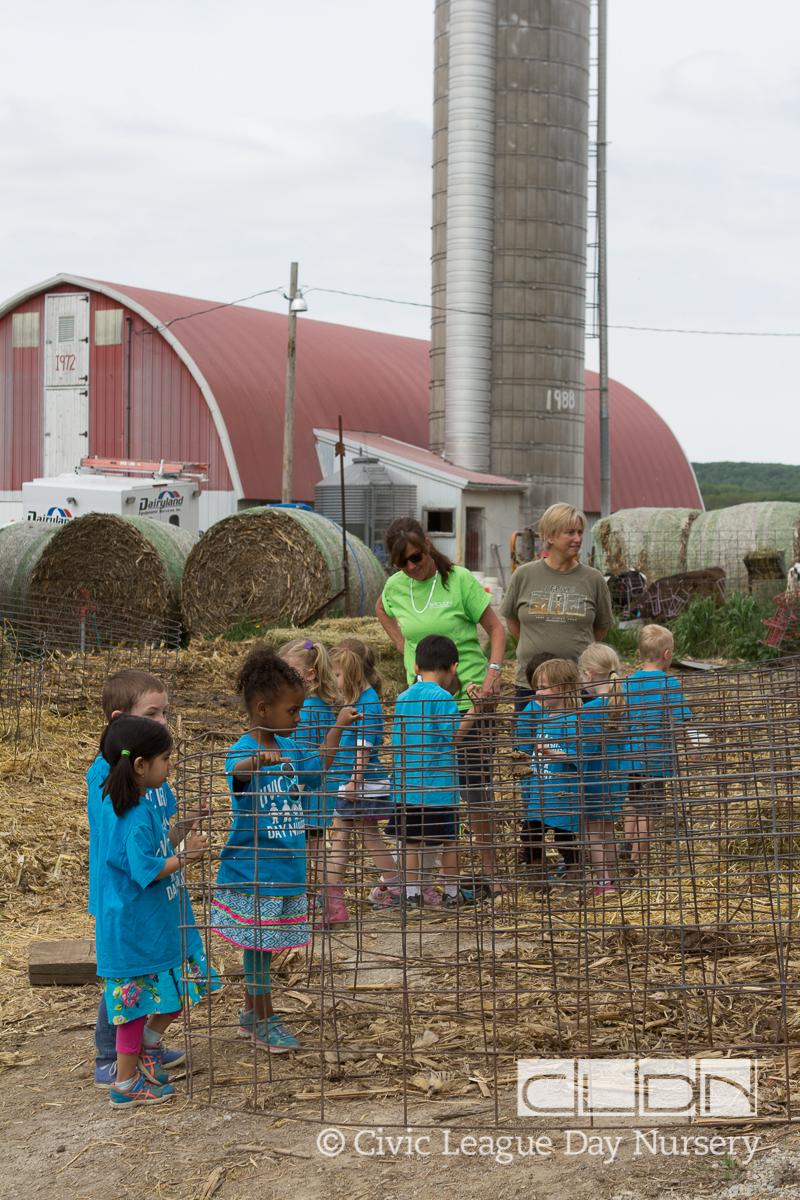 CLDN Farm_2016-418