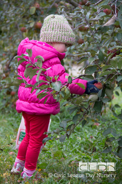 CLDN Apple Orchard-219.jpg