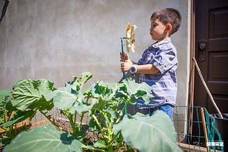 0617202 Water Garden Play day-0260.jpg