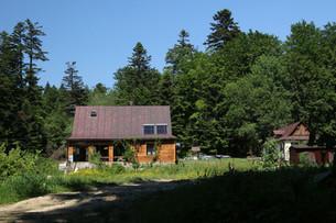 Zunächst nächtigen wir in einer einsamen Waldhütte...