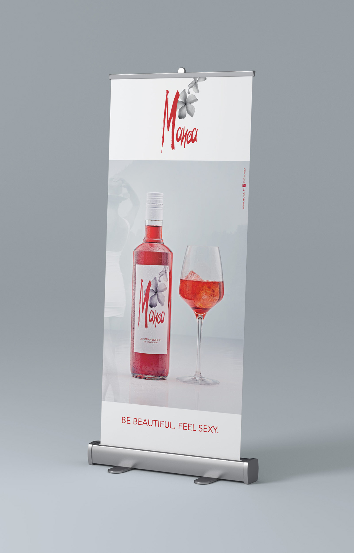 Mockup_Rollup_side_85x200_MANEA03