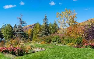 vail-colorado-foliage-betty-ford-park-wa