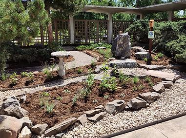 Boulder Public Library's Audubon Rockies Habitat Hero Native Plant Demonstration Garden
