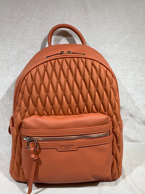 David Jones Backpack 6266-2 CR