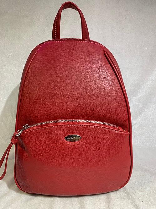David Jones Backpack CM5604 RD